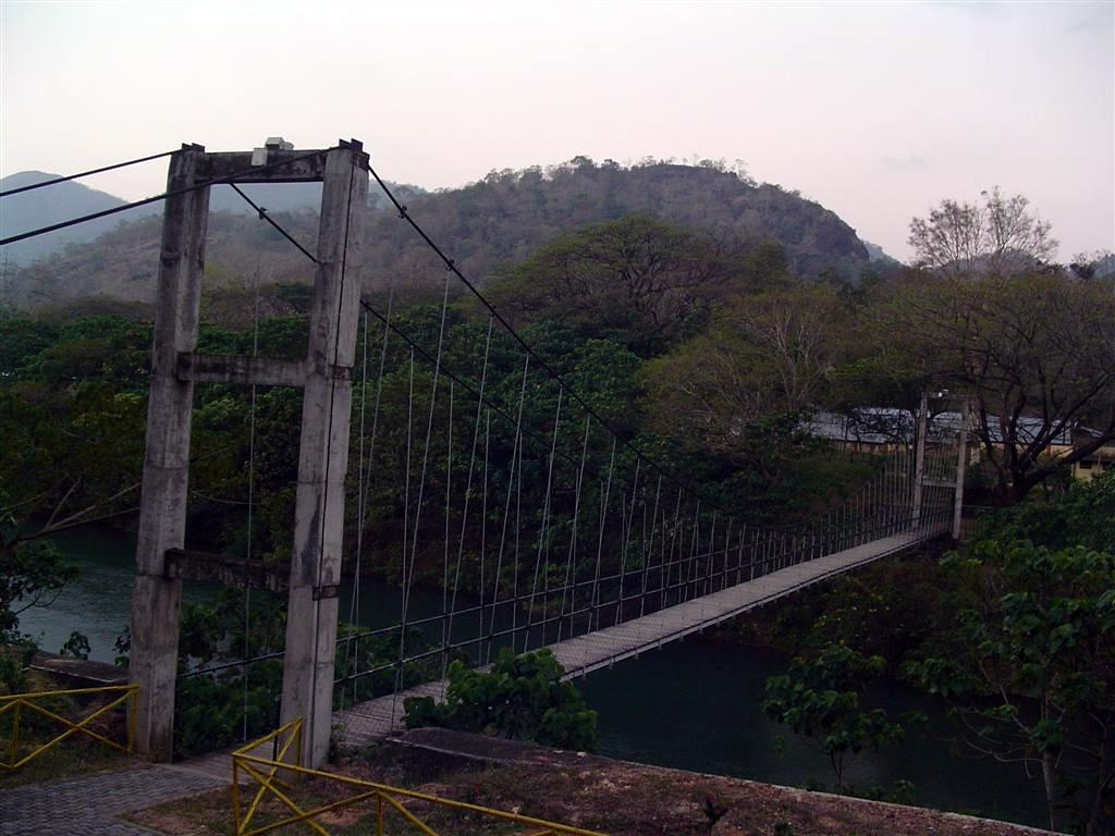 Thenmala Hanging Bridge