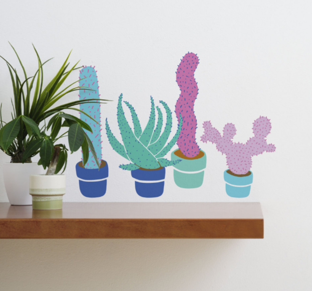 Four Potted Cactuses