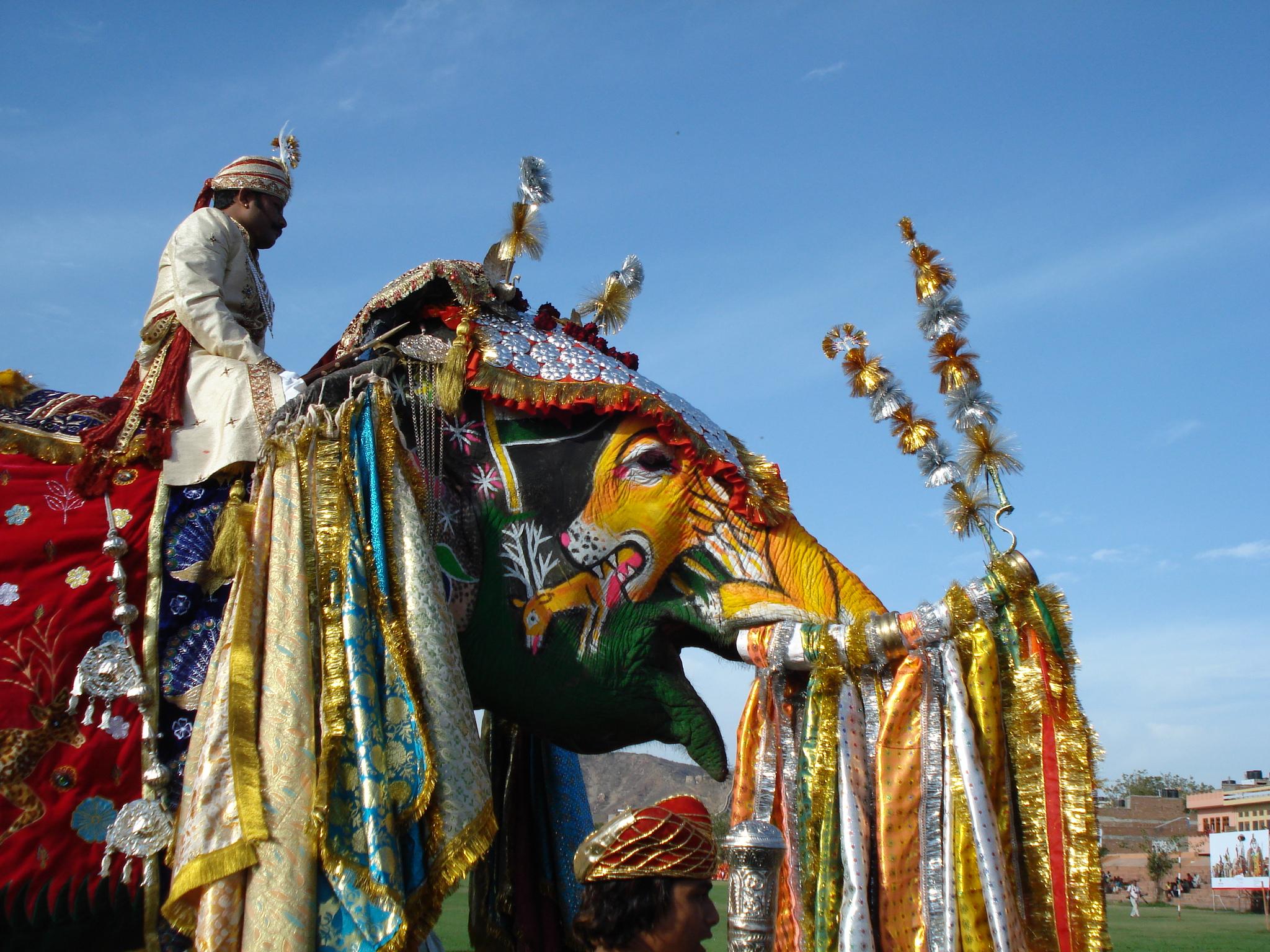 Jaipur Elephant Festival 1
