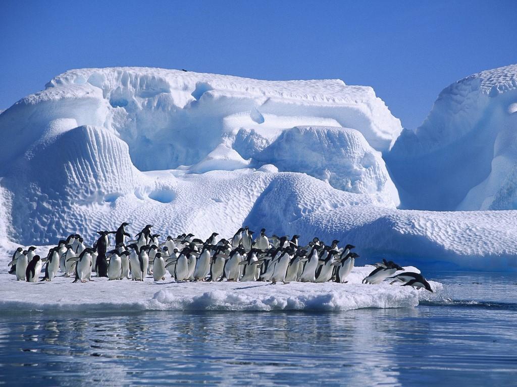 Plateau Station, Antartica