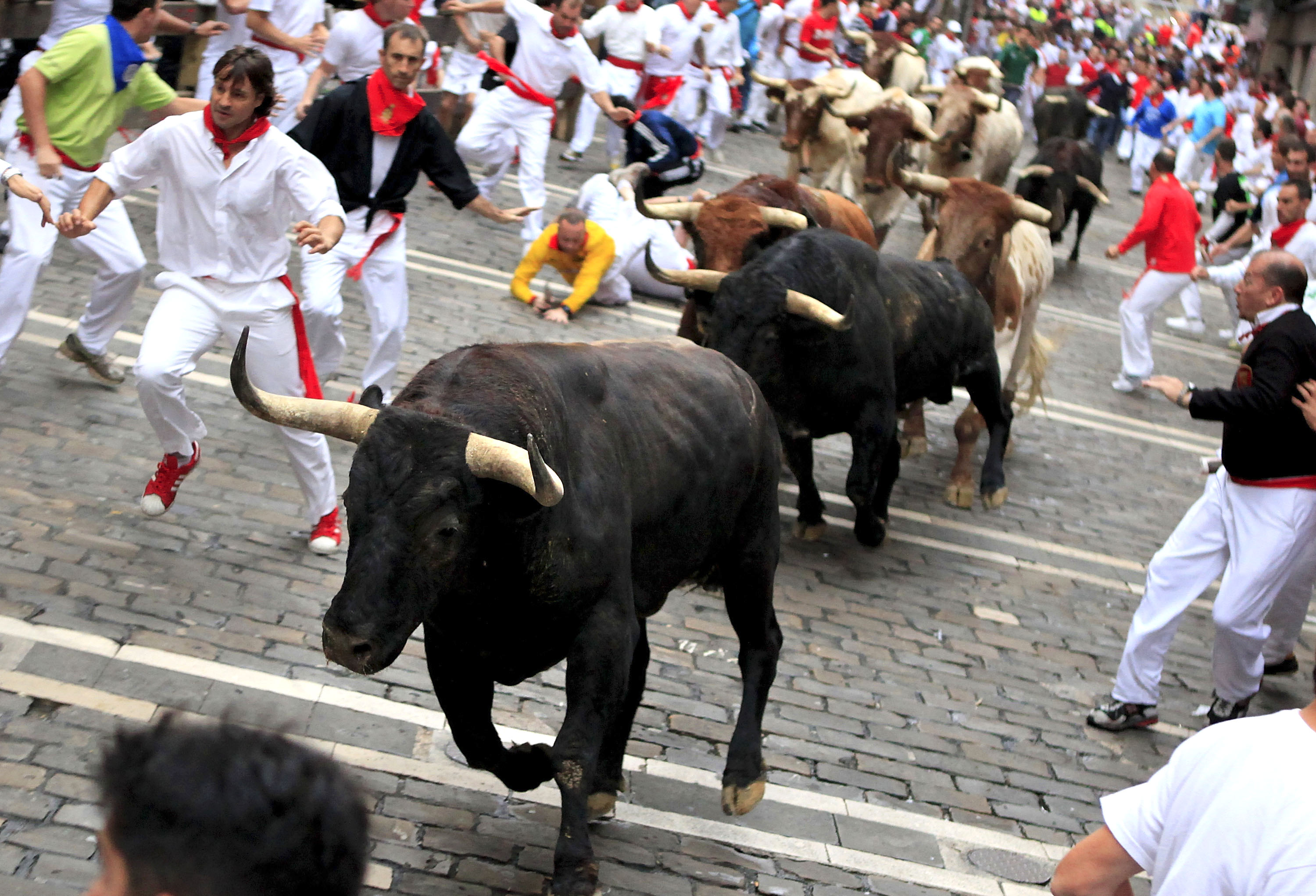 Running of the Bulls 1