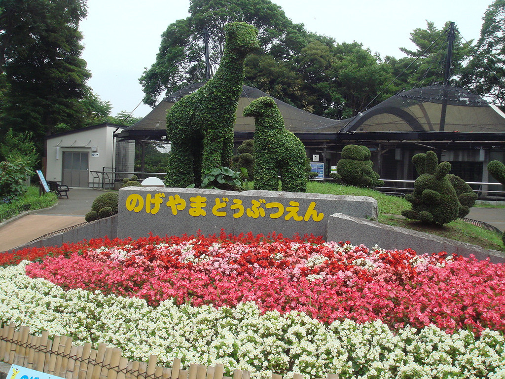 Yokohama Zoo Japan