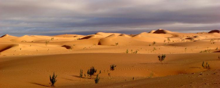 10. mauritania