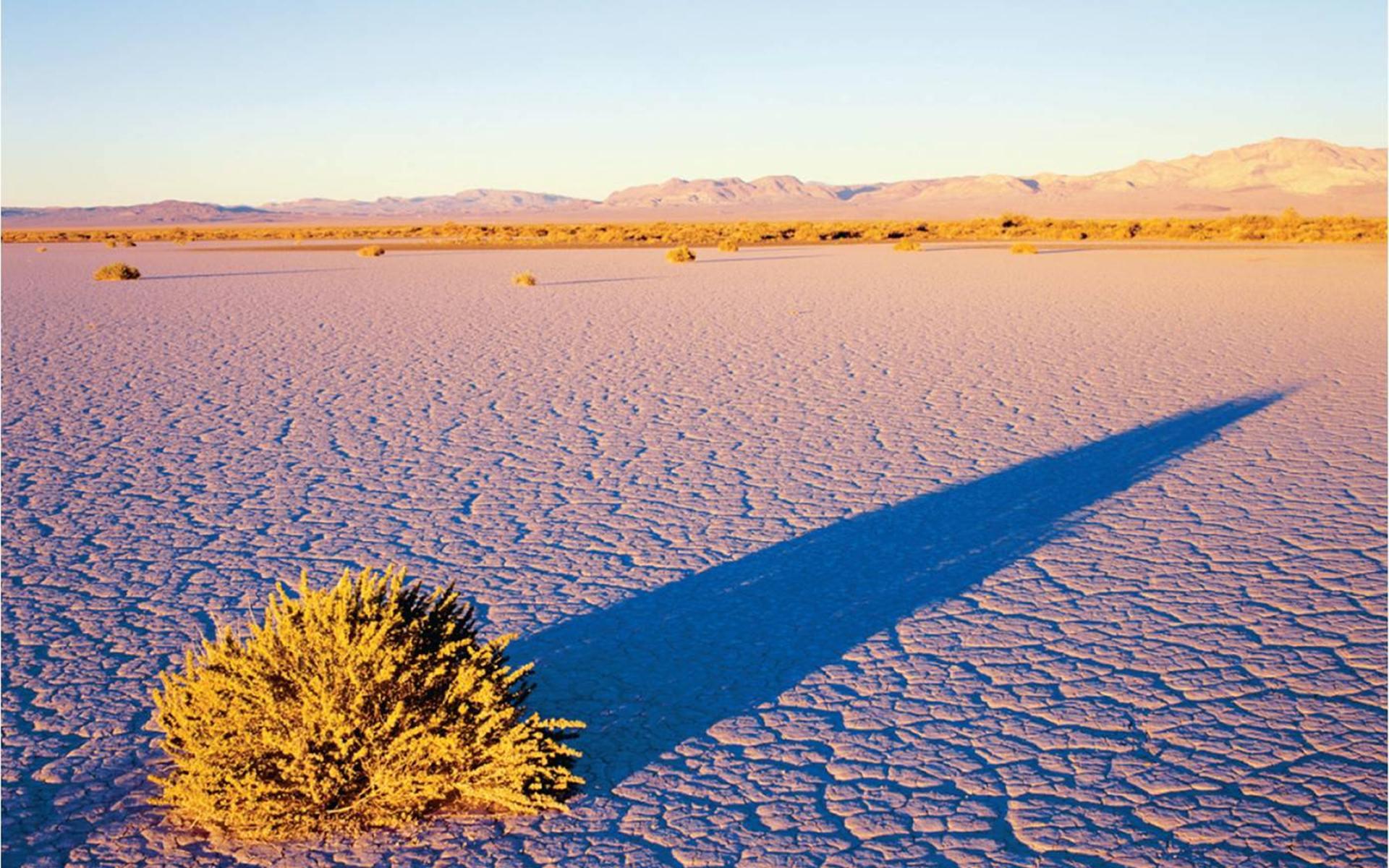 basin-desert