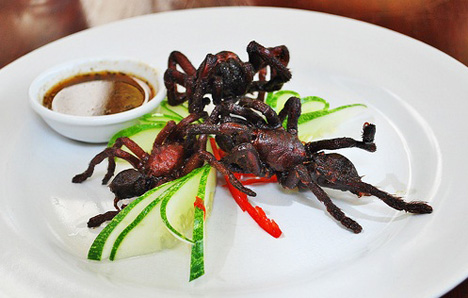 fried-tarantula